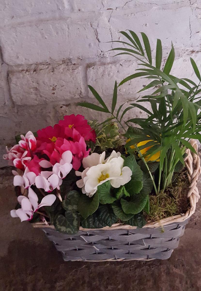 jugs-baskets-floral-arrangements-rugeley-florist-010