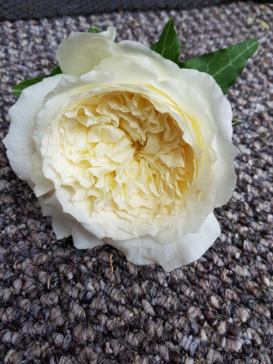 buttonholdes-wedding-flowers-rugeley-florist-staffordshire-037